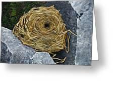 Campagnol Nest Greeting Card