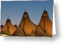 Canopies At Dusk Greeting Card