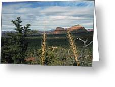 Capitol Butte Greeting Card