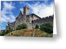 Carcassonne By Day Greeting Card