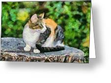 Cat On Tree Trunk Greeting Card