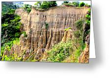 Cathedral Gully Greeting Card