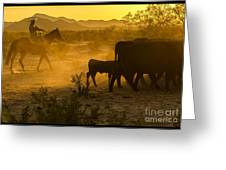 Cattle Drive 6 Greeting Card