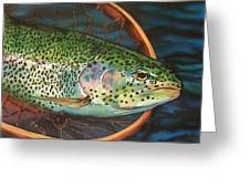 Caught On Canvas Greeting Card by Tim  Joyner