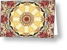 Cecropia Sun 4 Greeting Card