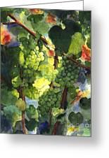 Chardonnay Au Soliel Greeting Card