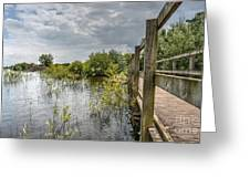 Chasewater Greeting Card
