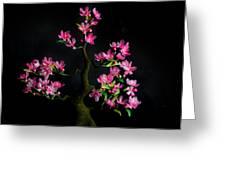 Cherry Blossom Greeting Card