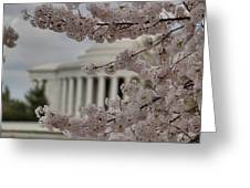 Cherry Blossoms With Jefferson Memorial - Washington Dc - 01133 Greeting Card