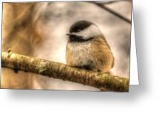 Chickadee Magic Greeting Card