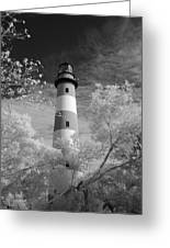 Chincoteague Island Lighthouse Greeting Card