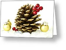 Christmas Greeting Card by Blink Images