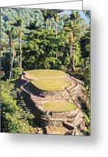 Ciudad Perdida In Colombia Greeting Card