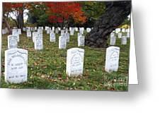Civil War Dead At Arlington Greeting Card