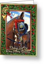 Cleveland Bay Horse Christmas Card Greeting Card