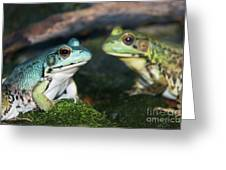 Close-up Of Blue And Green Frogs Greeting Card