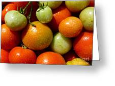 Closeup Of Ripening Fresh Tomatoes Greeting Card