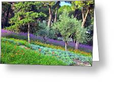 Colorful Park With Flowers Greeting Card