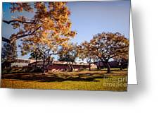 Colorful Trees Of Long Beach In The Autumn Greeting Card