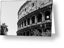 Colosseum - Rome Italy Greeting Card