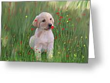Computer Generated Portrait Of A Dog Greeting Card