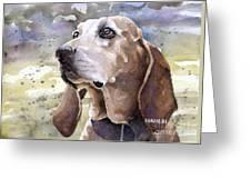 Coonhound - Pumpkin Greeting Card