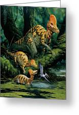 Corythosaurus Greeting Card