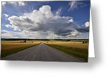 Country Road Greeting Card by Conny Sjostrom