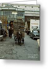 Covent Garden Market 1973 Greeting Card by David Davies