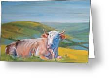 Cow Lying Down Greeting Card