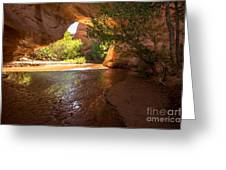 Coyote Natural Bridge - Coyote Gulch - Utah Greeting Card by Gary Whitton