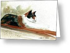 Crazy Cat Greeting Card