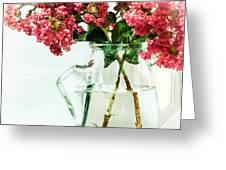 Crepe Myrtle In A Vase Greeting Card