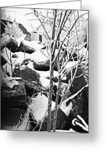 Cut Stone Blocks Backyard Snow Aberdeen South Dakota 1965 Black And White Greeting Card