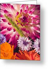 Dahlia Zinnia Bachelor's Buttons Flowers Greeting Card