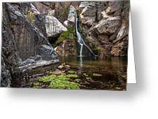 Darwin Falls Greeting Card