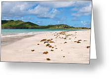 Deserted Beach At Vieux Fort Greeting Card