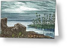 Devonian Period Greeting Card
