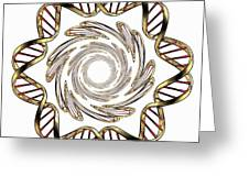 Dna (deoxyribonucleic Acid) Greeting Card