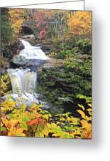 Doanes Falls In Autumn Greeting Card