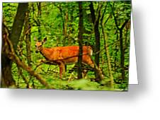 Doe On The Move Greeting Card