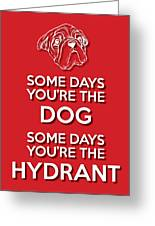 Dog Or Hydrant Red Greeting Card