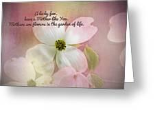 Dogwood Blossoms.  Greeting Card