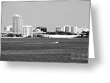Downtown Clearwater Skyline Greeting Card