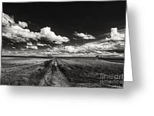 Drifting Clouds Greeting Card