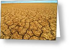 Dry Cracked Earth Greeting Card