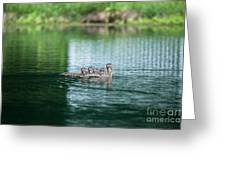 Duck Call Greeting Card