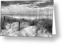Dune Fences Greeting Card by Debra and Dave Vanderlaan