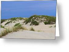Dunes And Grasses 11 Greeting Card