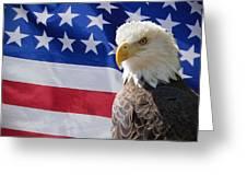 Eagle And Flag Greeting Card